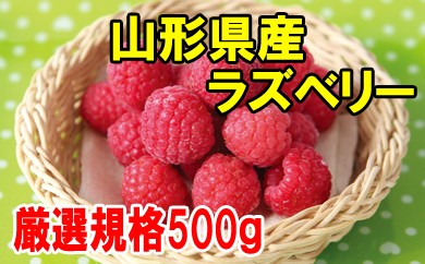冷凍ラズベリー(厳選)500g