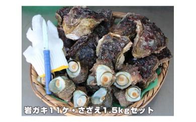 No.133 岩ガキ11ケ・さざえ1.5kgセット