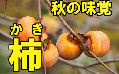【先行予約】柿