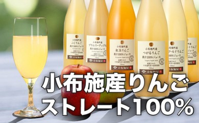 B-17【特産品コース】小布施産りんごジュース飲み比べ6種セット
