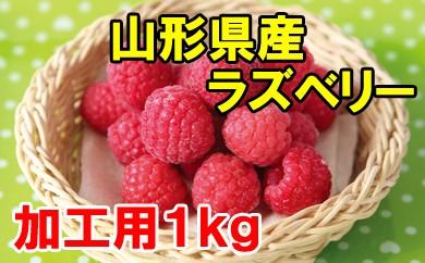 冷凍ラズベリー(加工用)1kg