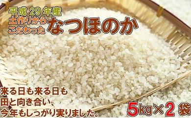 【A-153】29年産新米!米しか作らない親父が丹精込めた「なつほのか」