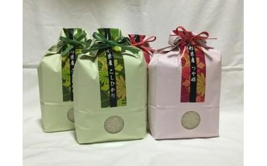 A29-926 平成29年産米鶴岡産特別栽培米コシヒカリ・つや姫(各4kg)