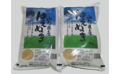 A30-029 はえぬき玄米(10kg)