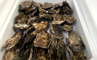 10-97 生牡蠣 中サイズ 約2.8kg(30個入)