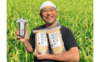 16.農家直送『山ちゃんの発芽玄米&黒米』セット