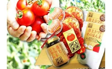 A30-752 トマトの加工品セット(小)