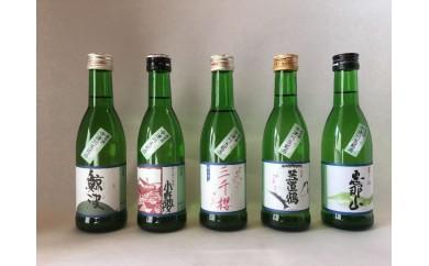 10015 中津川五銘酒セット