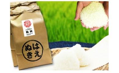 N29-032 平成29年産米鶴岡産特別栽培米はえぬき(10kg)