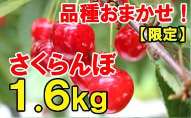 【先行予約】平成30年産さくらんぼ品種おまかせ(ご自宅用)1.6kg