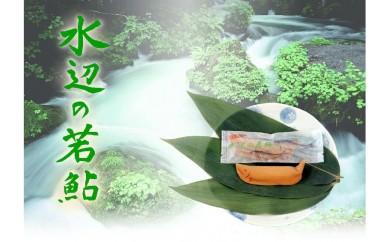 20018 御菓子所 川上屋 (夏季限定) 和菓子セット