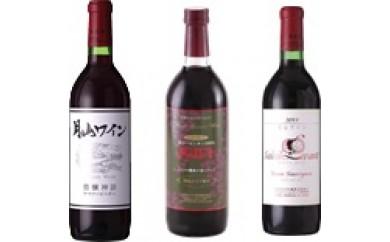 N30-152 月山ワイン3本セット