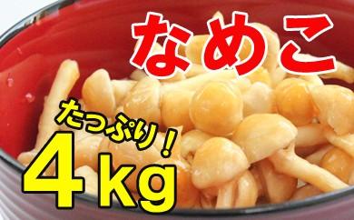 【お福分けシリーズ】なめこ 4kg