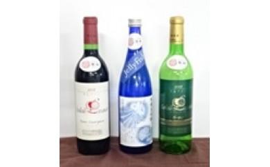 B29-226 鶴岡清酒・ワインBセット