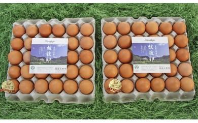 黒富士農場の放牧卵たっぷり60個セット