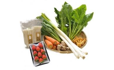 207 みかわの田からもの 冬の野菜セット