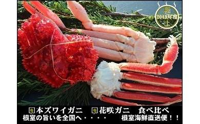 CA-70009 本ズワイガニと花咲ガニの食べ比べセット[449401]