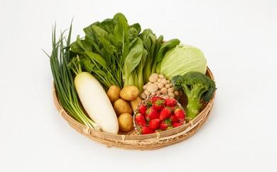 F019.季節の野菜セット