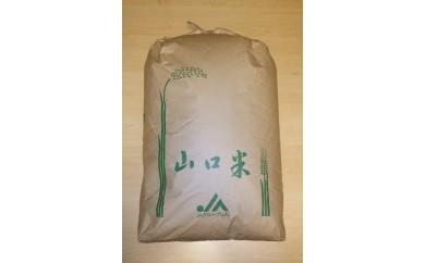 30D-045 徳地清流米ひとめぼれ玄米30kg