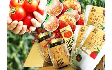 N30-551 トマトの加工品セット(大)