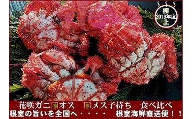 CC-70008 花咲ガニオス・メス(子付)3~5尾(計3.2kg)[449403]