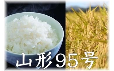 【限定50】平成30年産米 尾花沢産精米「山形95号」半年定期便 10kg×6ヶ月