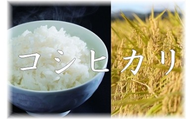 【限定40】平成30年産 尾花沢産精米「コシヒカリ」半年定期便 10kg×6ヶ月