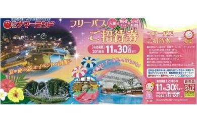 【平成30年】東京サマーランドフリーパス招待券1枚