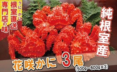 CA-31008 【北海道根室産】ボイル花咲ガニ500~600g×2尾【GCF】[363935]