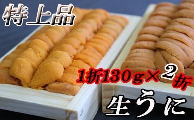 CB-16015 【北海道根室産】エゾバフンウニ(黄色・茶色系)130g×2折[450746]