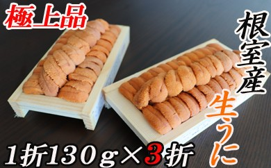 CB-16014 【北海道根室産】エゾバフンウニ(赤系)130g×3折[450734]