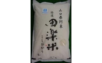30A-003 「田楽米」コシヒカリ100kg(エコやまぐち50認証取得)