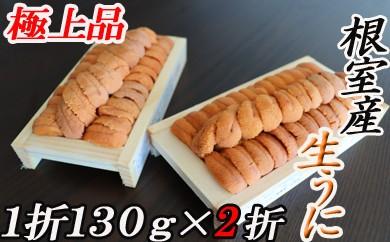 CD-16004 【北海道根室産】エゾバフンウニ(オレンジ~茶系)130g×2折[450750]
