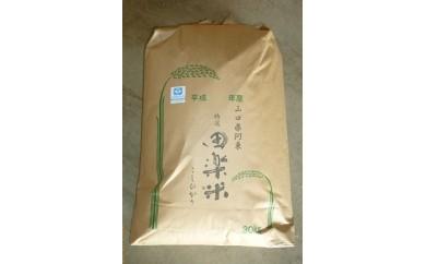30B-009 「田楽米」コシヒカリ30kg(エコ山口50認証所得)