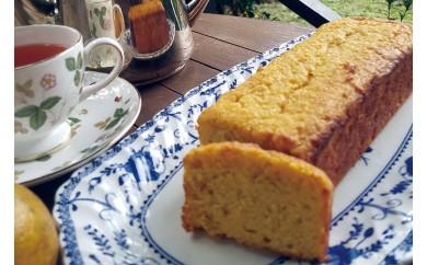 まるごとタンカンのアーモンドケーキ
