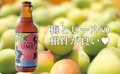 A-131 【季節限定】伝兵衛フルーツビールセット