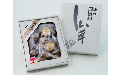 30E-009 山口徳地産原木栽培乾しいたけ②