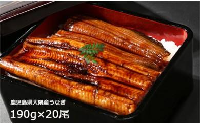 727 鹿児島県大隅産うなぎ蒲焼×20尾(3,800g)