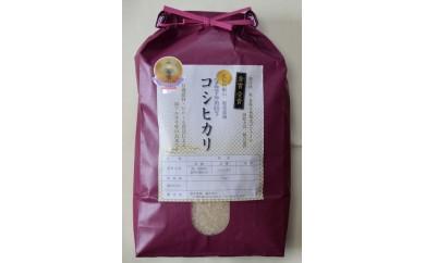 [29XA]服部農園の「有機肥料栽培コシヒカリ」5kg