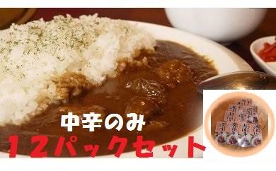 D-034 【クレジット限定100セット】短角牛カレー12Pセット(中辛)