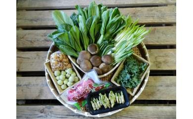 213 庄内産の山菜(栽培物)と新鮮野菜のセット