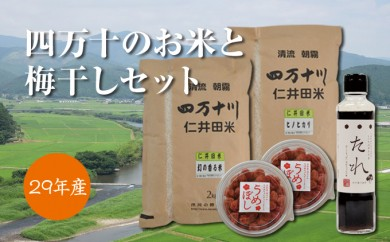 Bd-06 四万十のお米と梅干しセット