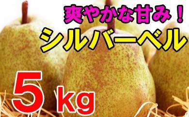 シルバーベル(ご自宅用)5kg