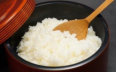 Bb-01 五穀豊穣!四万十の米を贅沢に楽しむ仁井田米セット