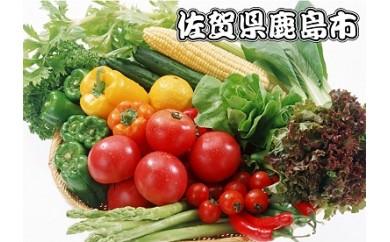 B-24 肥前の国のお野菜・果物詰め合わせセット