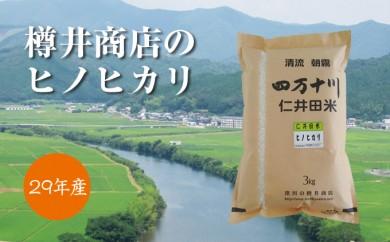 Bd-07 おいしい仁井田米のお店 樽井商店のヒノヒカリ 3kg