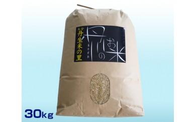 No.555 丹生米の里丹川のお米 ヒノヒカリ玄米 30kg【30pt】