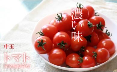 A-39 濃い味!中トマト約1.6kg(約200g×8パック)