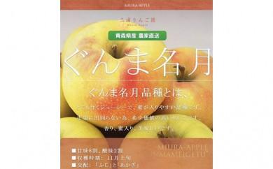[№5731-0158]那由多のりんご園  ぐんま名月約3kg贈答クラス※クレジットのみ