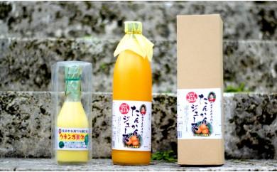 B-25 徳之島のビタミンセット◎たんかんジュース&クネンボ果汁